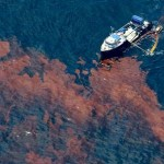 Disaster Looming: Oil Spill Enters Mississippi River