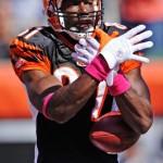 Terrell Owens Faces NFL Fine for Pregame Tweet