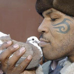 Mike Tyson: PETA Pickets Pigeon Show; Boxer on 'Ellen' (Video)