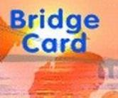 michigan_welfare_card(2011-med-wide-upper)