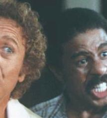 richard_pryor&gene_wilder(2011-stir-crazy-wide-upper)
