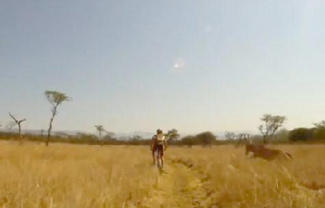 south_african_mountain_biker(2011-med-wide)