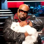 'The Voice's' Cee Lo Talks Strategy: 'You Judge for What is Possible'