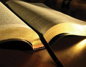 bible-study-col