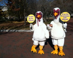 PETA turkey protest