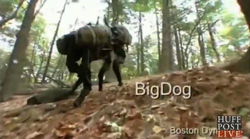 dog drones