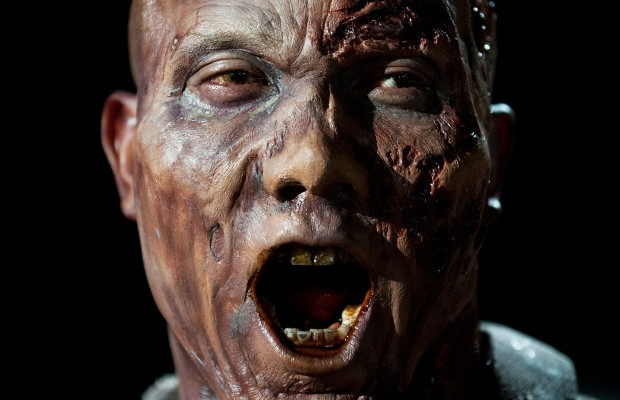 Hines-Ward-Zombie1-620x400