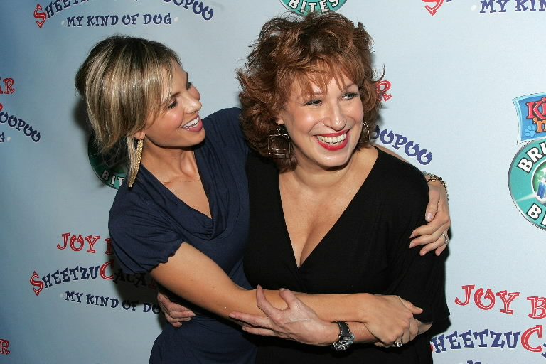 "Elisabeck Hasselbeck (L) and Joy Behar of ""The View"""