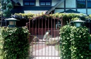 White rose centered on gate of Gaye home