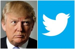 donald trump & twitter bird