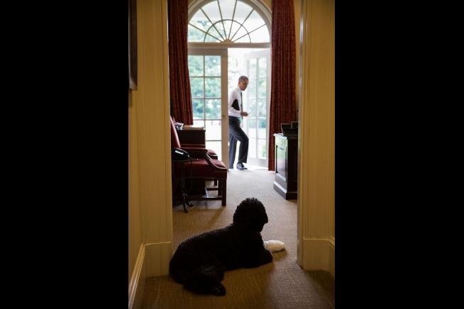 Obama_BO