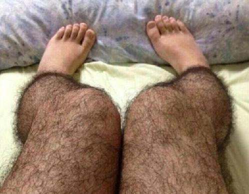 hairy legs stockings