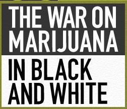 war on marijuana1