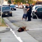 California Man's Dog Shot by Police During Arrest (Graphic Video)