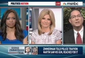 sharpton panel on zimmerman