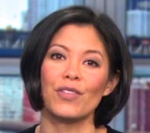 Martin bashir s vacated msnbc timeslot goes to alex wagner