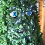 Steven Ivory:  O Christmas Tree