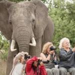 EURthisNthat: Whoa! I Was Photobombed By…An Elephant?