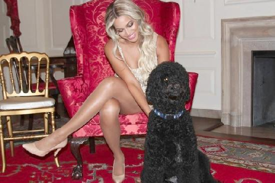 beyonce & first dog sunny