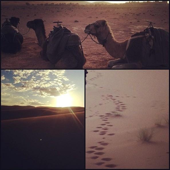 usher desert 7