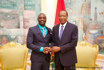 www.akonlightingafrica.com