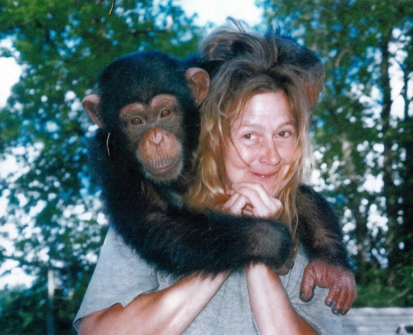 CHIMP1: Travis gives Charla Nash a hug in this undated photo. It was Nash, a neighbor of Travis' owner, Sandra Herold, who was attacked by Travis on Feb. 16 outside Herold's Stamford home. Nash is now being treated for severe facial injuries at the Cleveland Clinic in Ohio, known for performing the first near-total facial transplant in the U.S. Travis was killed by police after the attack.  PHOTO COURTESY OF SANDRA HEROLD.