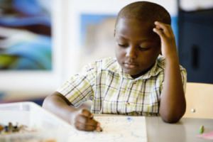 NY Segregated Schools
