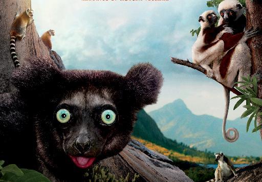 lemurs - madagascar - poster
