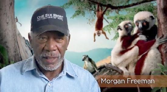 morgan freeman (madagascar screenshot)