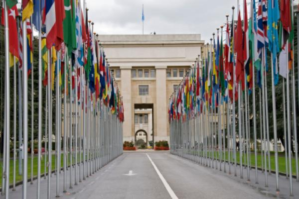 """The United Nations chooses the Pharrell Williams track, """"Happy,"""" to promote joy all around the world"""