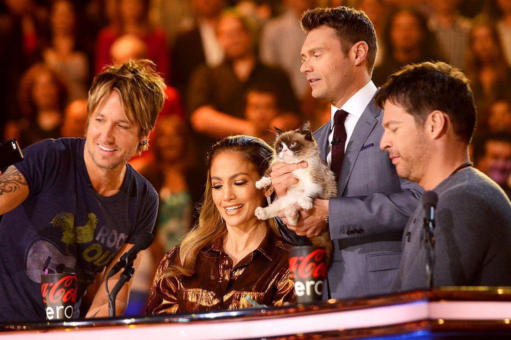 "Cat American Idol ""american Idol's"" Season 14"