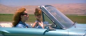 "Geena Davis (L) and Susan Sarandon in ""Thelma & Louise"""