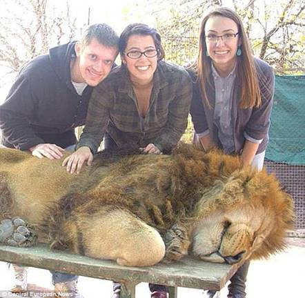 lion and family pose