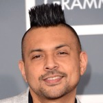 Sean Paul Cancels New Year's Eve Gig After Death Threat