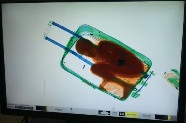 Smuggled Boy in suitcase, suitcase closed