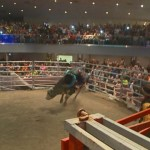 'I'm a Believer!' Pastor Rides Bull Inside Church to Attract Members