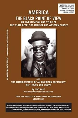america - the black point of view  (book cover)