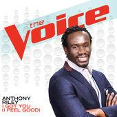 anthony riley (the voice)