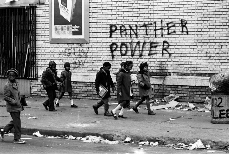Black_Panthers_Doc3