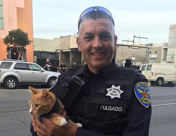 cop with pussy cat