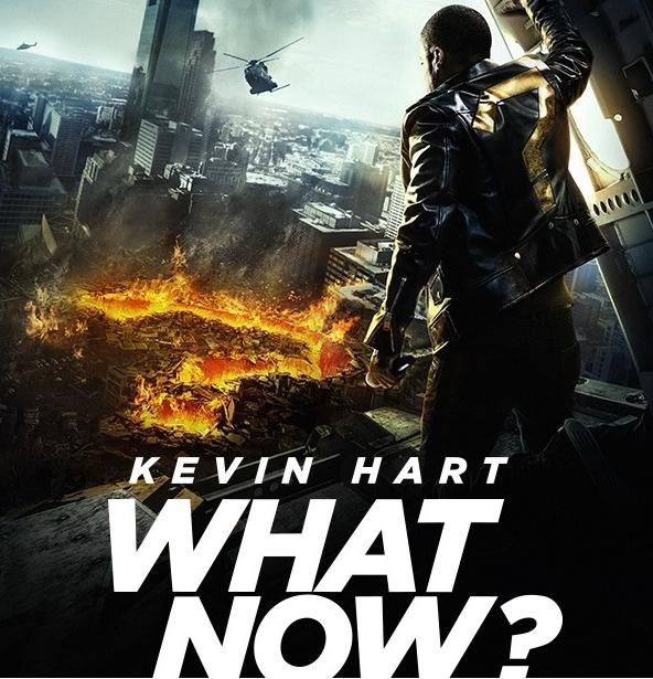kevin hart - what now