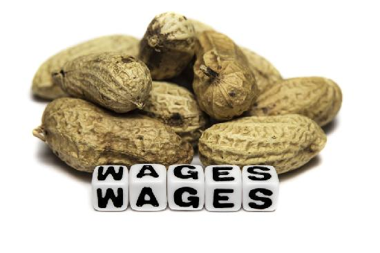 wages - peanuts