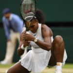 Twitter Launches Live Stream for Wimbledon Matches