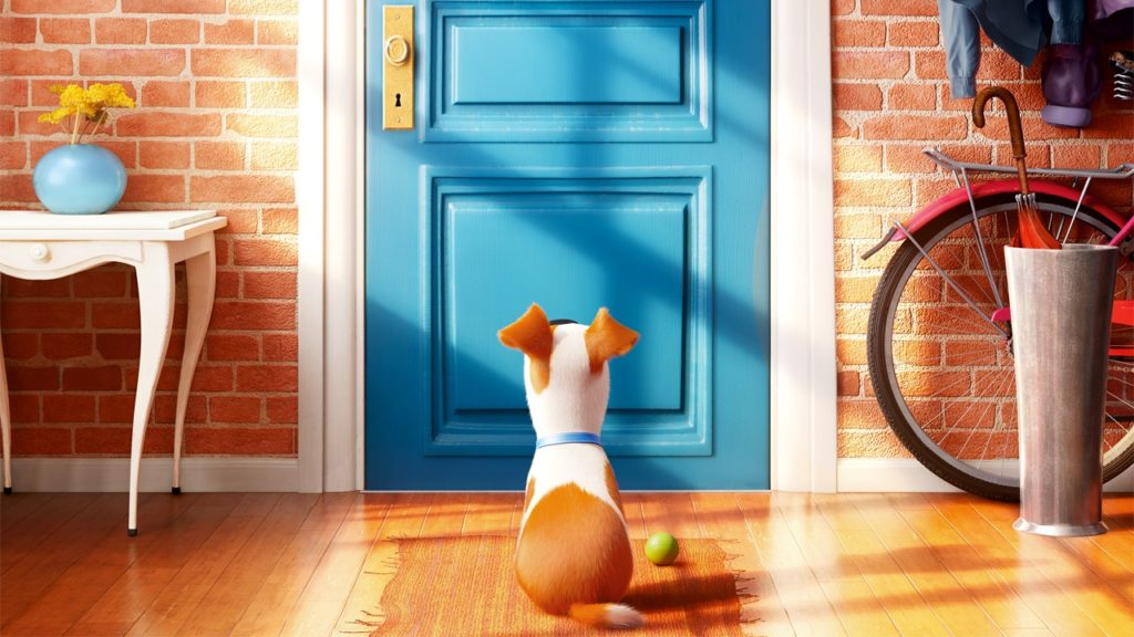Six-time Emmy winner Louis C. K. is the voice of Max, the terrier, in Universal Pictures' presentation of the 3D animation The Secret Life of Pets.