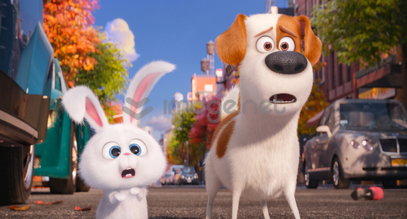 snowball and max (the secret life of pets)