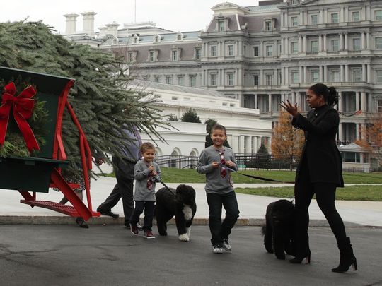 First lady Michelle Obama, accompanied by her nephews Austin and Aaron Robinson and her dogs Bo and Sunny, receives the official White House Christmas tree at the North Portico of the White House Nov. 25, 2016. (Photo: Alex Wong, Getty Images)