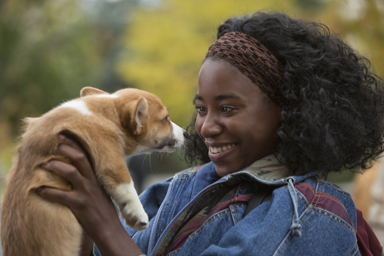 "This image released by Universal Studios shows Kirby Howell-Baptiste in a scene from ""A Dog's Purpose."" (Joe Lederer/Universal Studios via AP)"