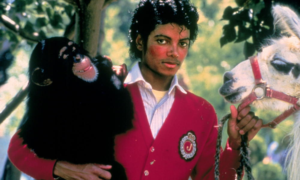 Michael Jackson with his chimpanzee Bubbles and pet llama (Jacki Sallow   MJJ Productions)