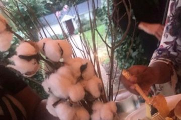 Lipscomb University in Tennessee uses cotton stalk centerpieces for a dinner for African American students