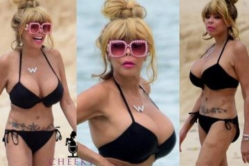 wendy williams beach-bikini collage1